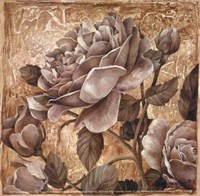 Antique Rose II Fine Art Print