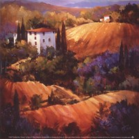 Evening Glow Tuscany Fine Art Print