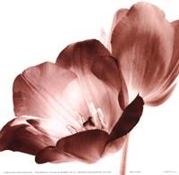 RedTulips Fine Art Print
