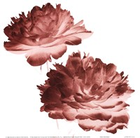 RedPeonies Fine Art Print