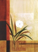 Single White Flower Fine Art Print