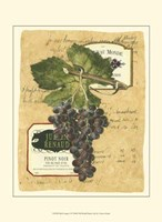 """Small Red Grapes I by Vision Studio - 10"""" x 13"""""""