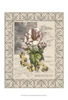 Garden for June III Fine Art Print