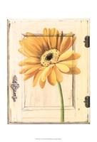 "Daisy Door by Megan Meagher - 13"" x 19"""