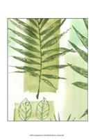 "Leaf Impressions III by Vision Studio - 13"" x 19"", FulcrumGallery.com brand"