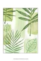 "Leaf Impressions IV by Vision Studio - 13"" x 19"", FulcrumGallery.com brand"