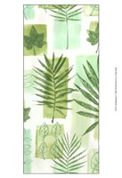 "Leaf Impressions V by Vision Studio - 13"" x 19"", FulcrumGallery.com brand"
