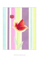 "Flowers & Stripes IV by Vision Studio - 13"" x 19"""