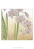 "Sunset Garden IV by Chariklia Zarris - 13"" x 19"", FulcrumGallery.com brand"