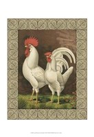 Cassell's Roosters with Border VI Fine Art Print