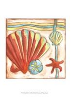 Pop Shells II Fine Art Print