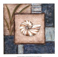 """Shell Montage I by Chariklia Zarris - 8"""" x 8"""""""