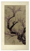"""Plum Blossom Tree by Vision Studio - 25"""" x 42"""""""