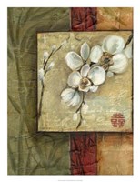 "Asian Orchids I by Ethan Harper - 20"" x 26"""