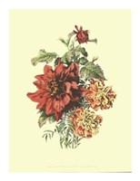 Lush Floral II Giclee