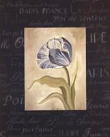 Tulipe Bleue II Fine Art Print