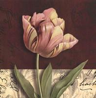 Postcard Tulip Fine Art Print