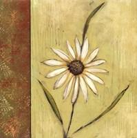 Celadon Beauty I Fine Art Print