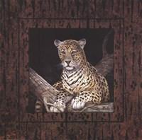"Leopard by Ruane Manning - 20"" x 20"""