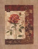 Burlap Tea Rose Fine Art Print