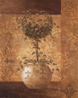 Topiary II Fine Art Print