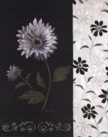 Nikki's Daisy Fine Art Print