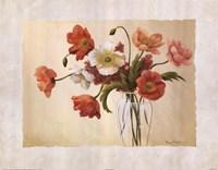 Cynde's Poppies Fine Art Print