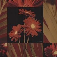 Crimson Gerberas Fine Art Print