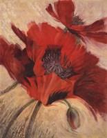 Petal Movement I Fine Art Print