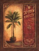 """Palm Exhibit I by Daphne Brissonnet - 22"""" x 28"""""""