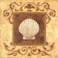 Stylized Shell I Fine Art Print