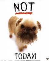 Not Today! Fine Art Print