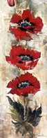 "Strand of Poppies I by Liz Jardine - 12"" x 36"""