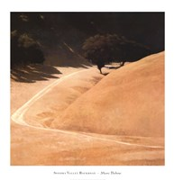 Sonoma Valley Backroad Fine Art Print