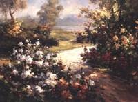 Pathway of Flowers Fine Art Print