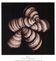 Focus Fine Art Print