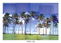 "40"" x 28"" Tropical Pictures"