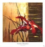 """Golden Space II by Terri Burris - 18"""" x 19"""" - $17.49"""
