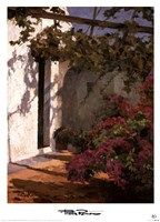 Bougainvillea and Vine Fine Art Print