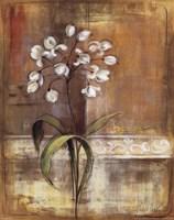 "Gentle Blossoms I by Silvia Vassileva - 16"" x 20"""