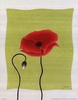 "Pretty Poppy by Deborah Falls - 11"" x 14"""