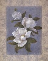 Blue Magnolias II Fine Art Print
