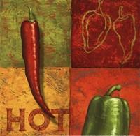 Chili III Fine Art Print