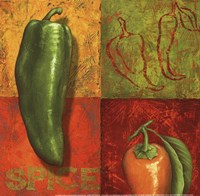 Chili IV Fine Art Print