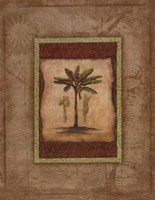 "Palm Botanical Study I by Susan Osborne - 22"" x 28"""