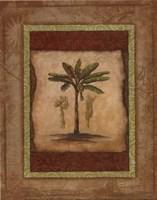 """Palm Botanical Study I - special by Susan Osborne - 8"""" x 10"""""""