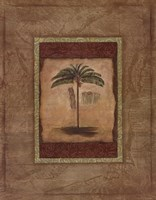 "Palm Botanical Study II by Susan Osborne - 22"" x 28"""