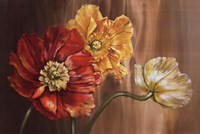 "Poppies by Selina Werbelow - 36"" x 24"""