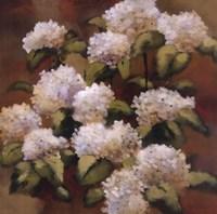 "Spring Sonnet by Onan Balin - 24"" x 24"" - $25.99"