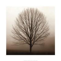 """Stillness by Erin Clark - 20"""" x 20"""""""